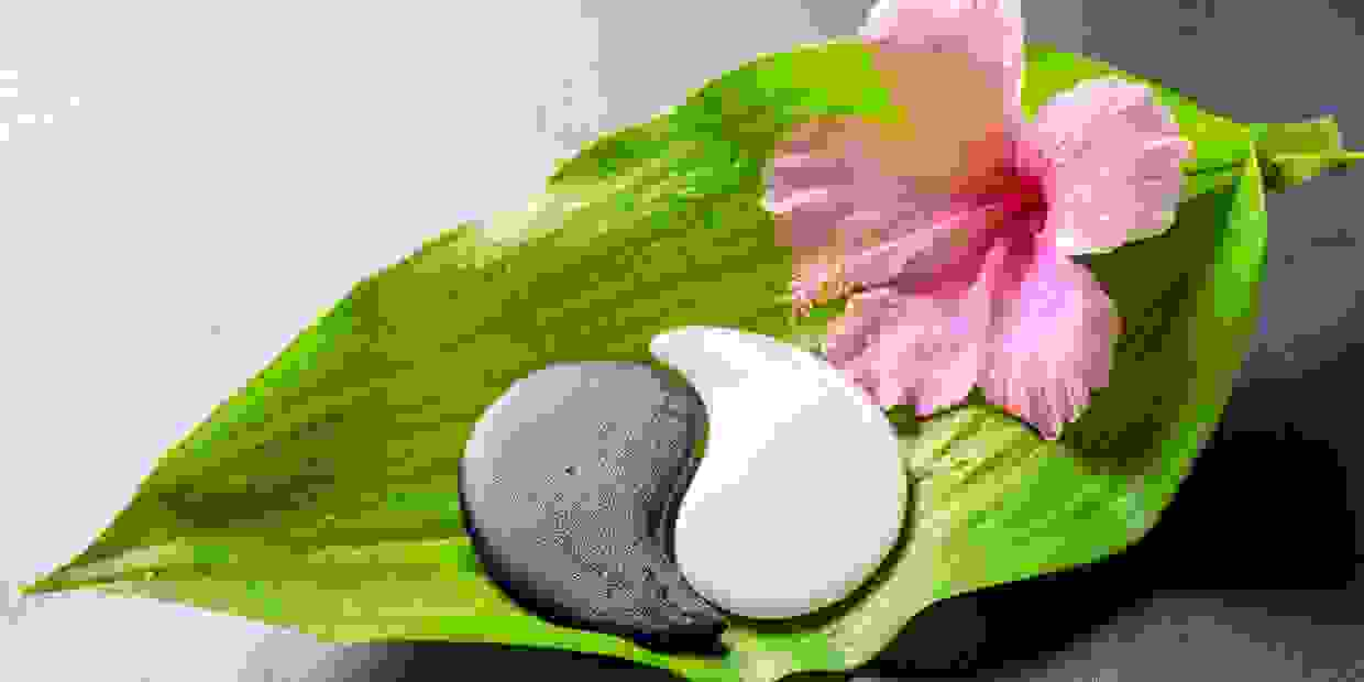 On a large green leave are two flat stones in  a sign of ying yang and one pink trumpet flower.