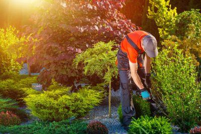 careers prestige landscaping llc