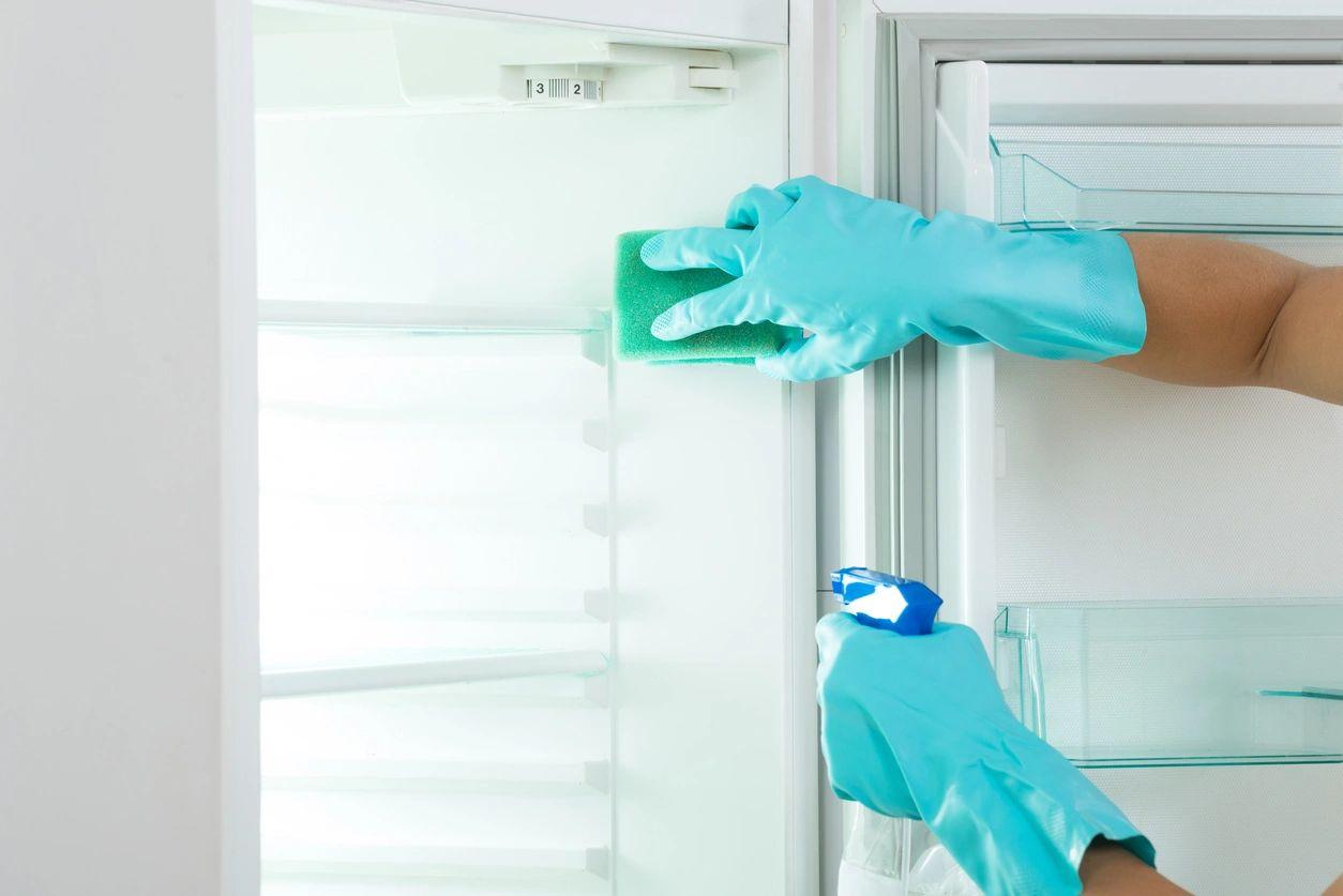 how to organize your refrigerator