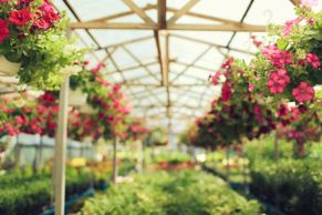 design, install, and sales of greenhouses