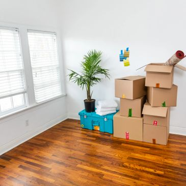 Rovem Moving Services