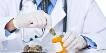 Marijuana Doctors Prescriptions Port Orange Florida