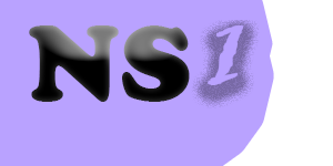 NS1.US