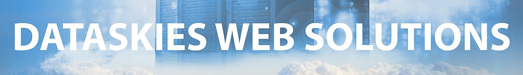 DataSkies Web Solutions