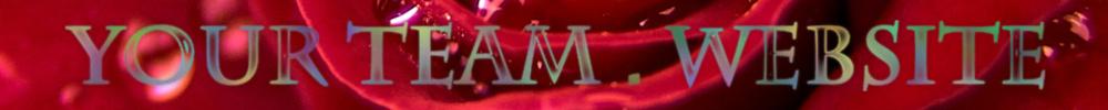 YourTeam.Website