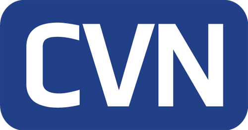 CV Networks Domains