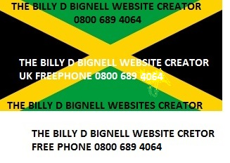 THE BILLY D BIGNELL WEBSITES CREATOR WAKE UP DRINK TEA AND CHANGE THE WORLD CALL FREE 0800 689 4064