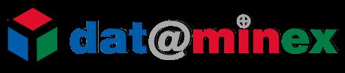 Dataminex Web Services Inc