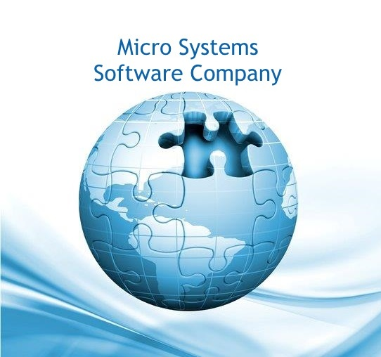 Micro Systems Software