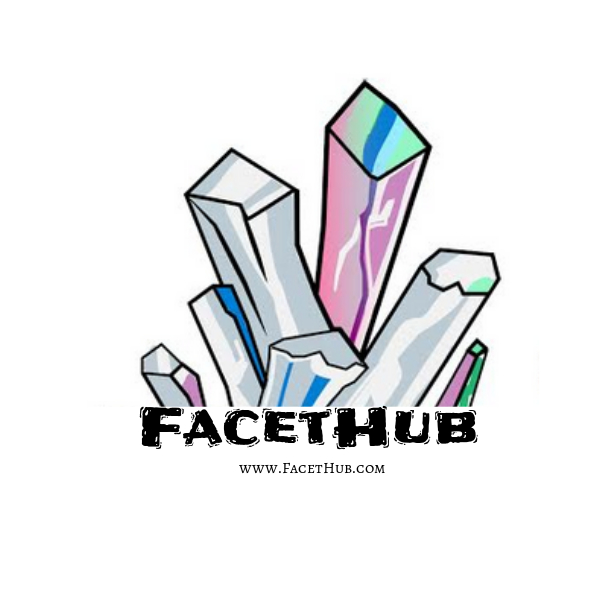 FacetHub