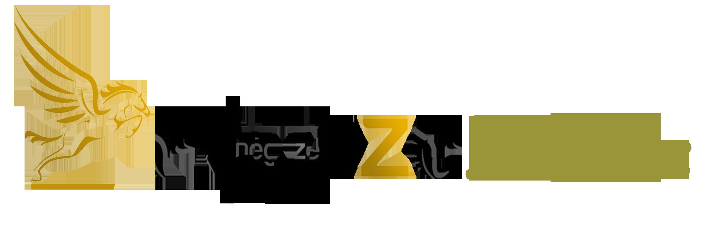 PEGAZE Online : créer votre site internet, acheter votre nom de domaine, hébergement wordpress, ...