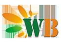 WeBest Infotech