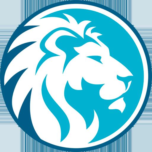 Blue Lion Solutions