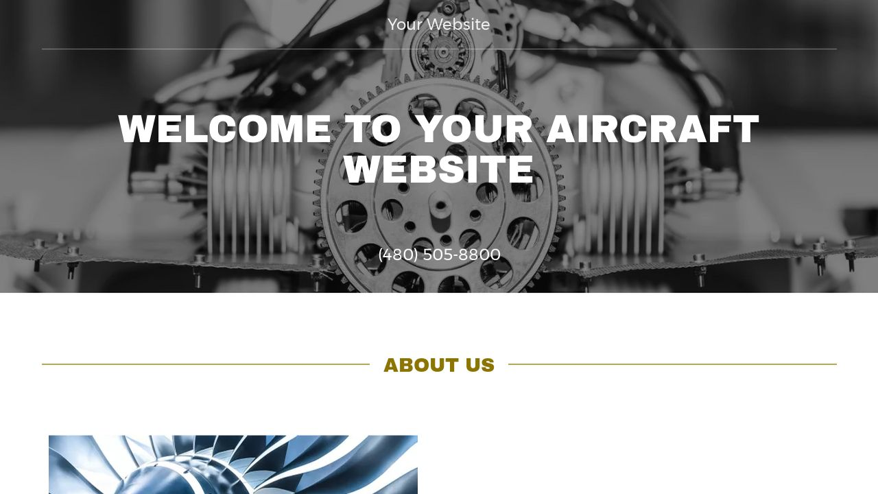 Aircraft Website: Example 1
