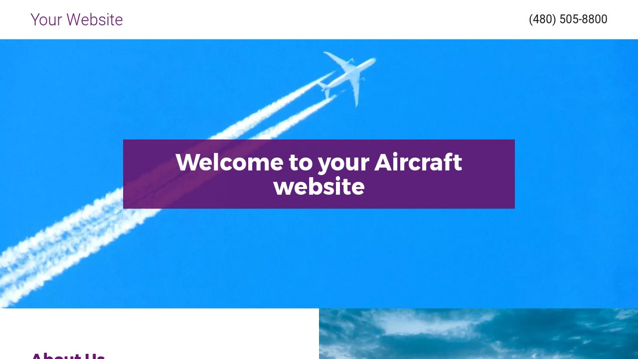 Aircraft Website: Example 13