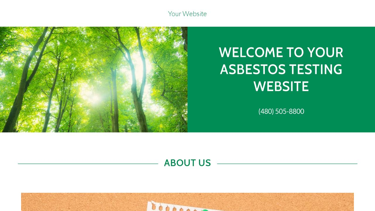 Asbestos Testing Website: Example 11