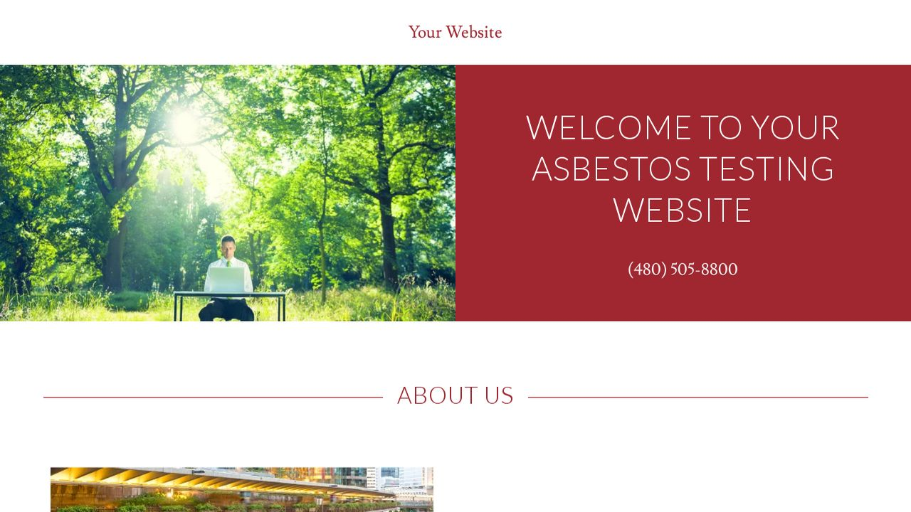 Asbestos Testing Website: Example 18