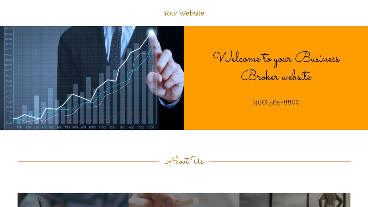 Business Broker Website: Example 6