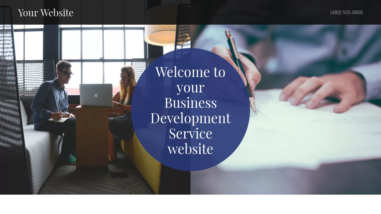 Business Development Service Website: Example 5