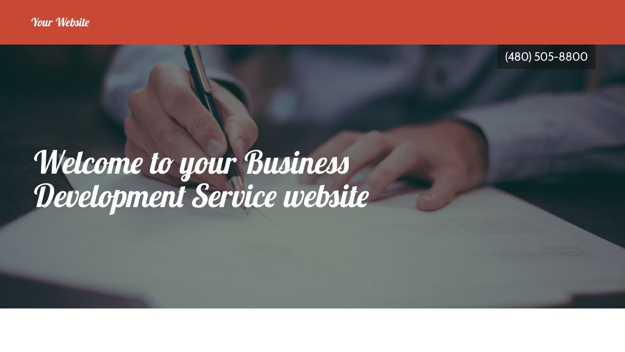 Business Development Service Website: Example 9