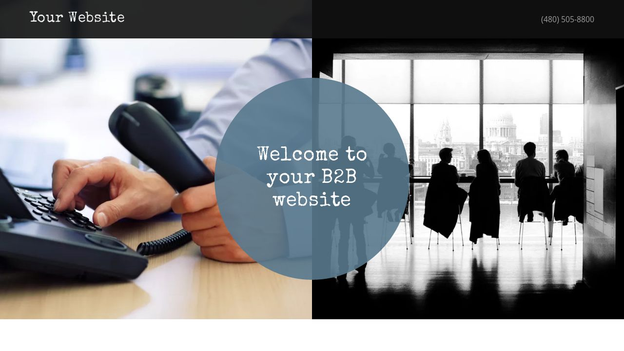 B2B Website: Example 12