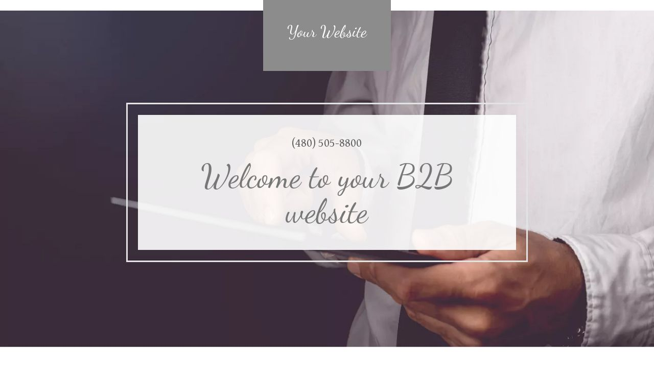 B2B Website: Example 13
