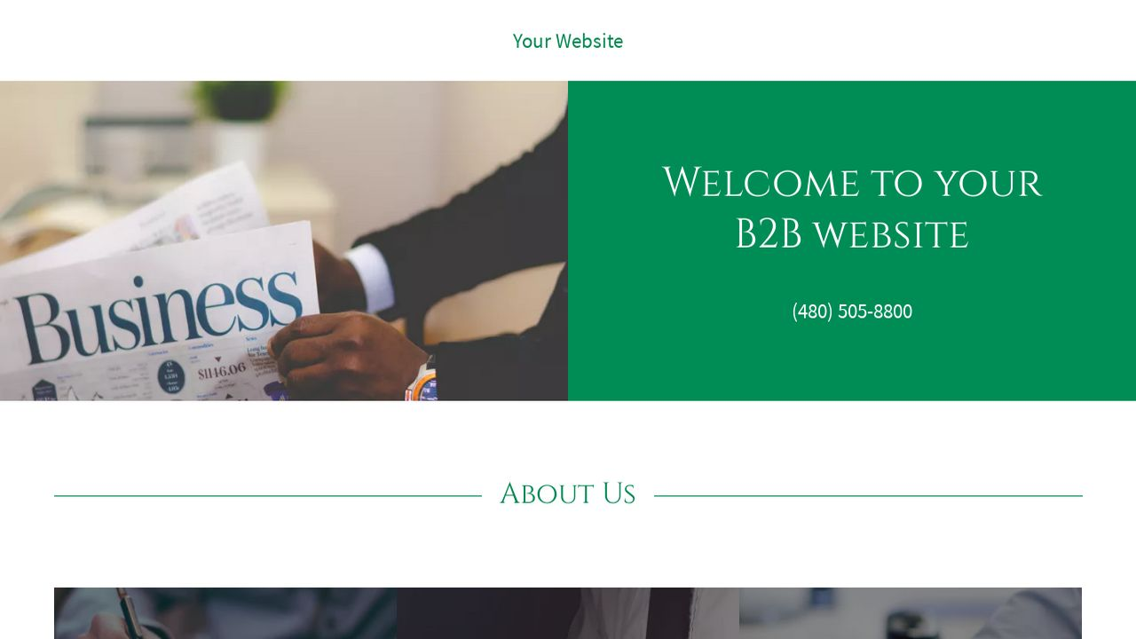 B2B Website: Example 18