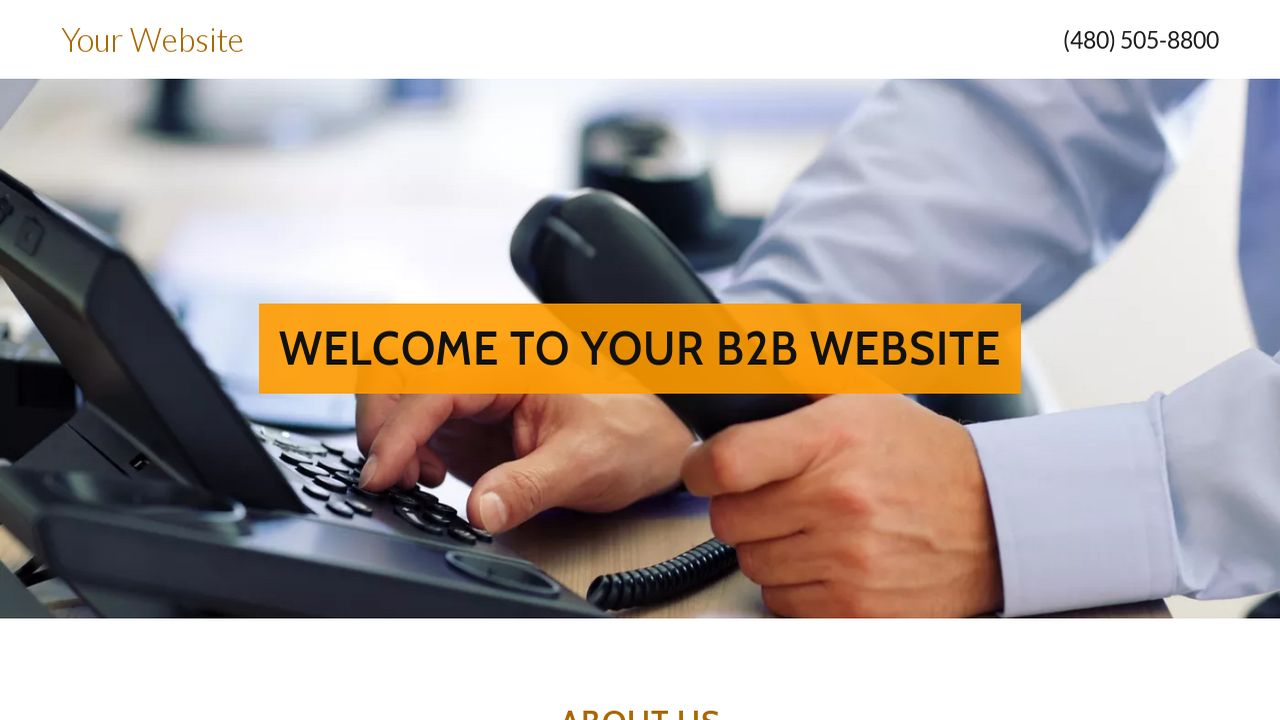 B2B Website: Example 3