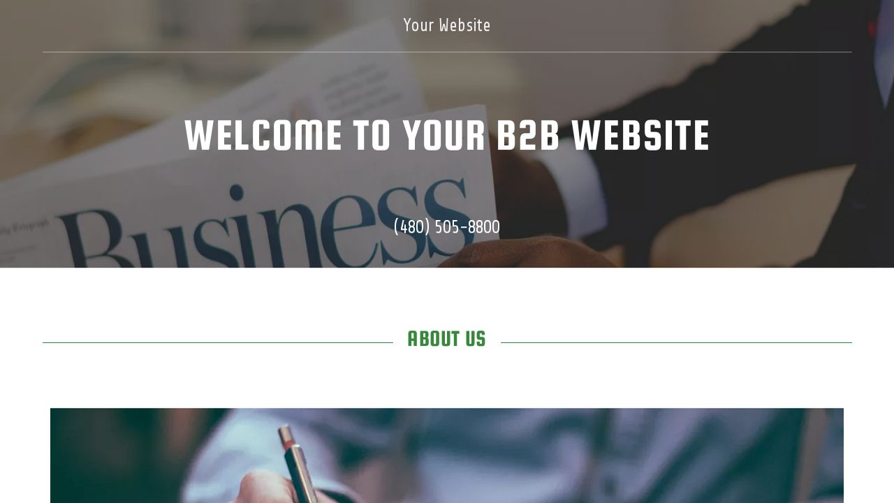 B2B Website: Example 9