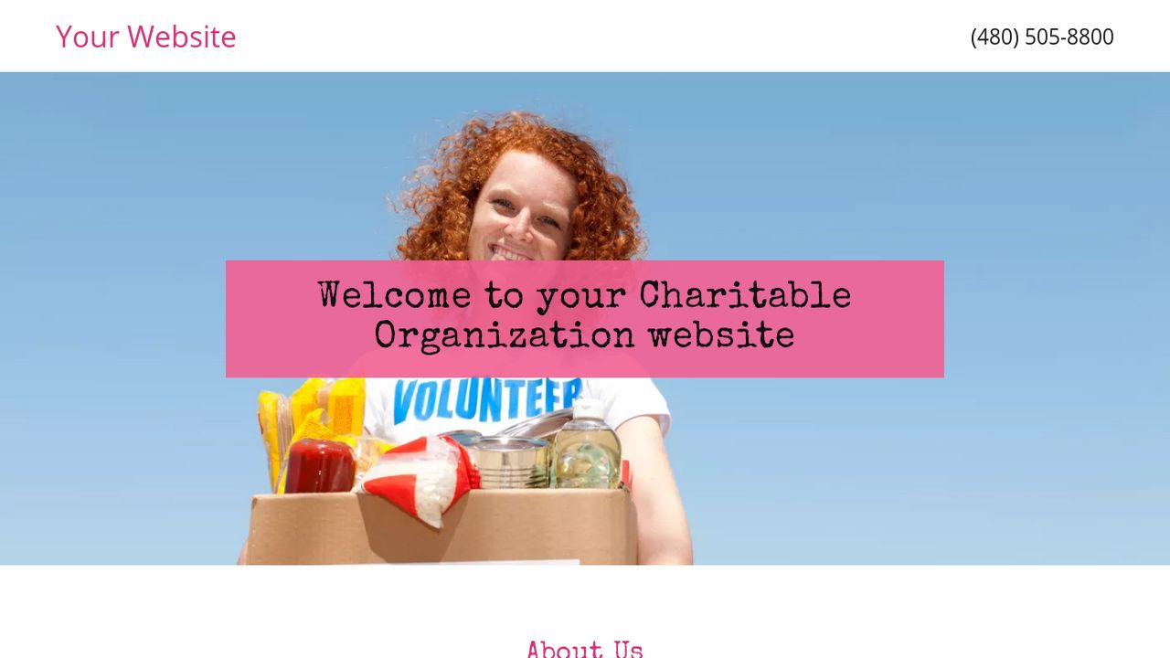 Charitable Organization Website: Example 10