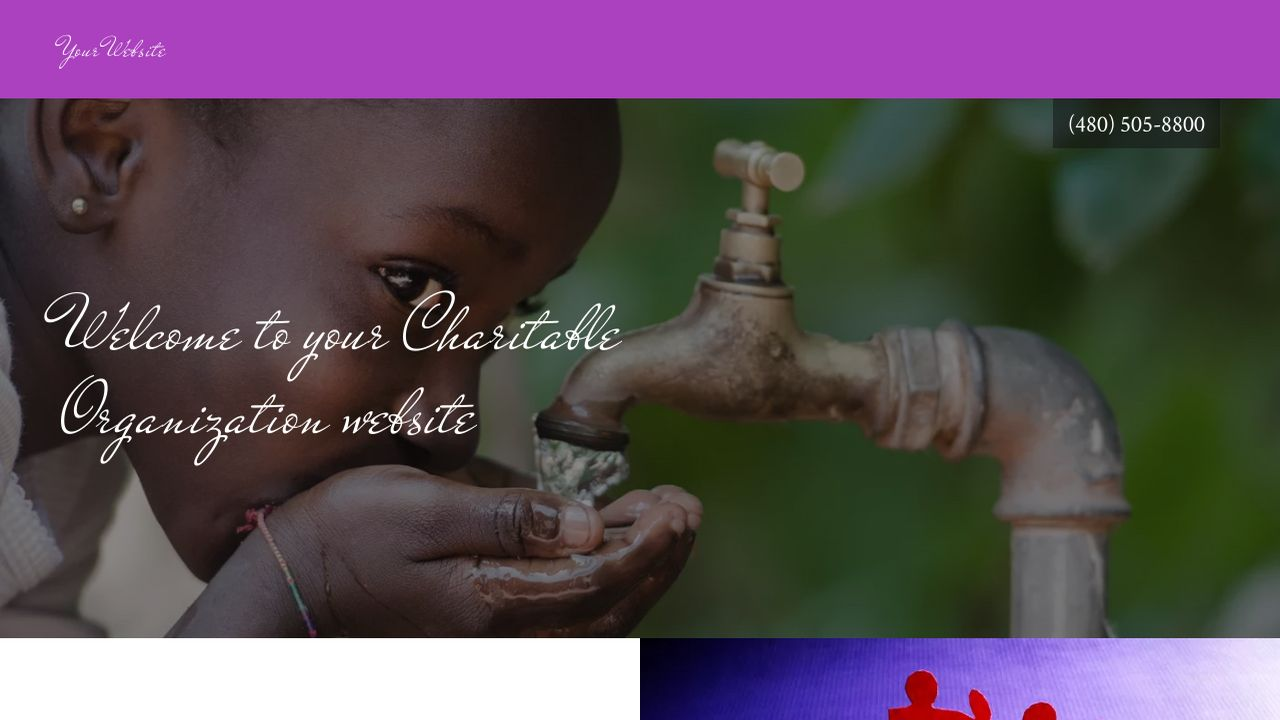Charitable Organization Website: Example 13