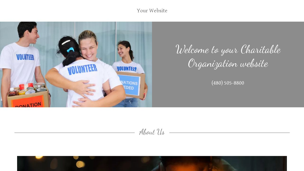 Charitable Organization Website: Example 4