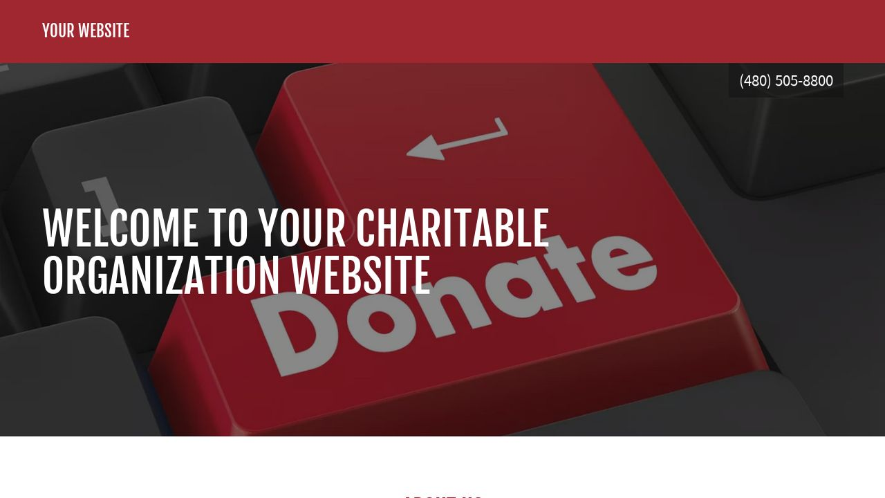 Charitable Organization Website: Example 6