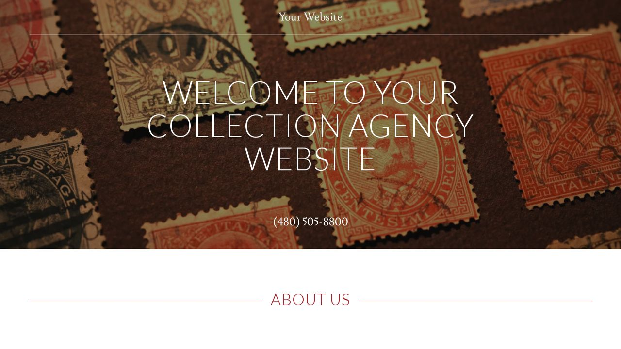 Collection Agency Website: Example 11