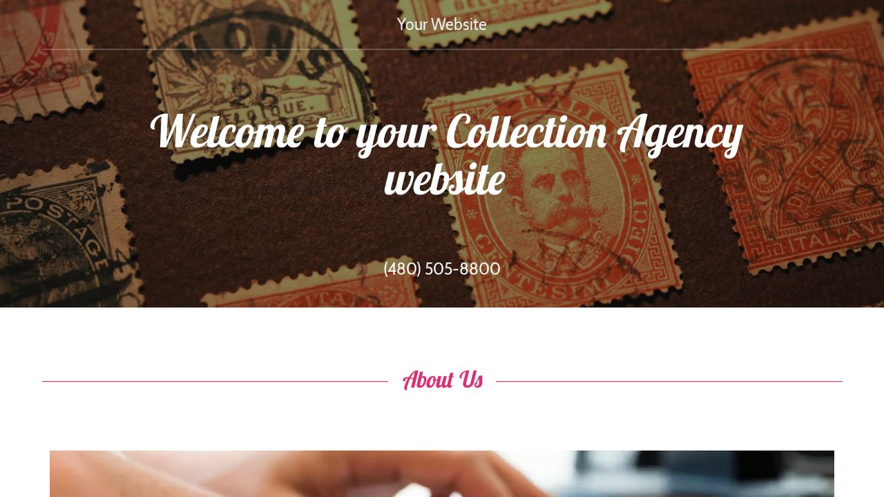 Collection Agency Website: Example 18