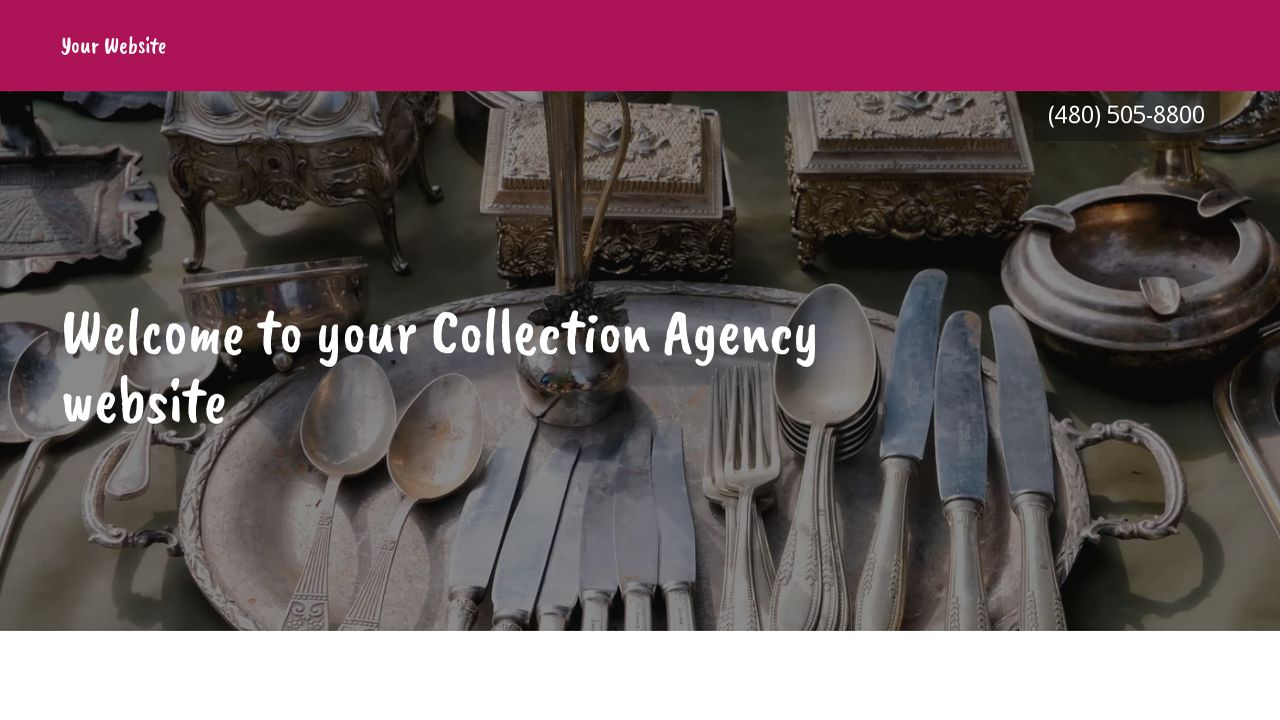 Collection Agency Website: Example 5