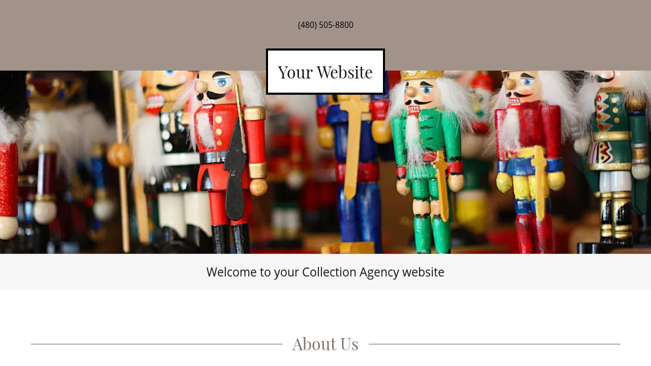 Collection Agency Website: Example 6