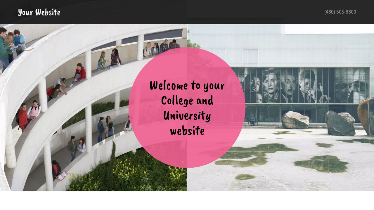 College and University Website: Example 11