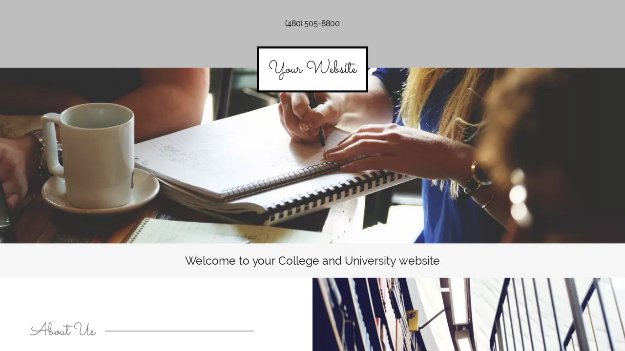 College and University Website: Example 2