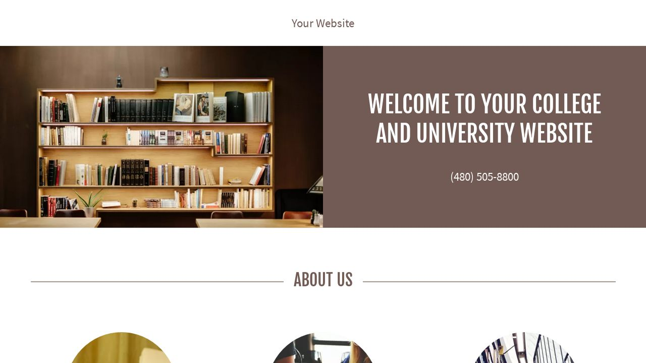 College and University Website: Example 3