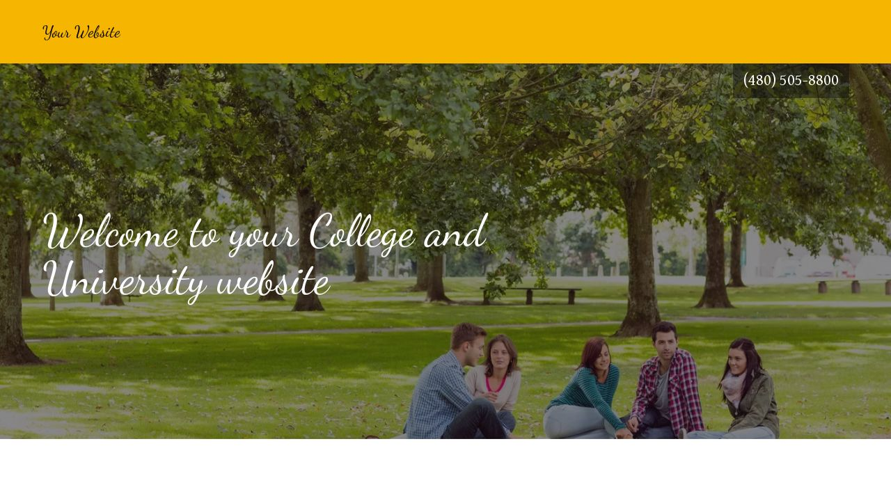 College and University Website: Example 5