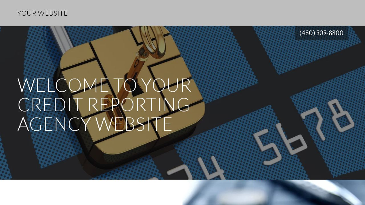 Credit Reporting Agency Website: Example 1