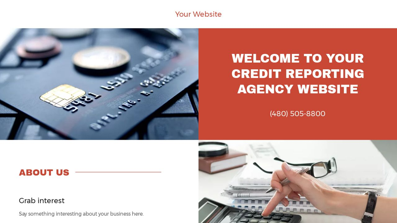 Credit Reporting Agency Website: Example 11