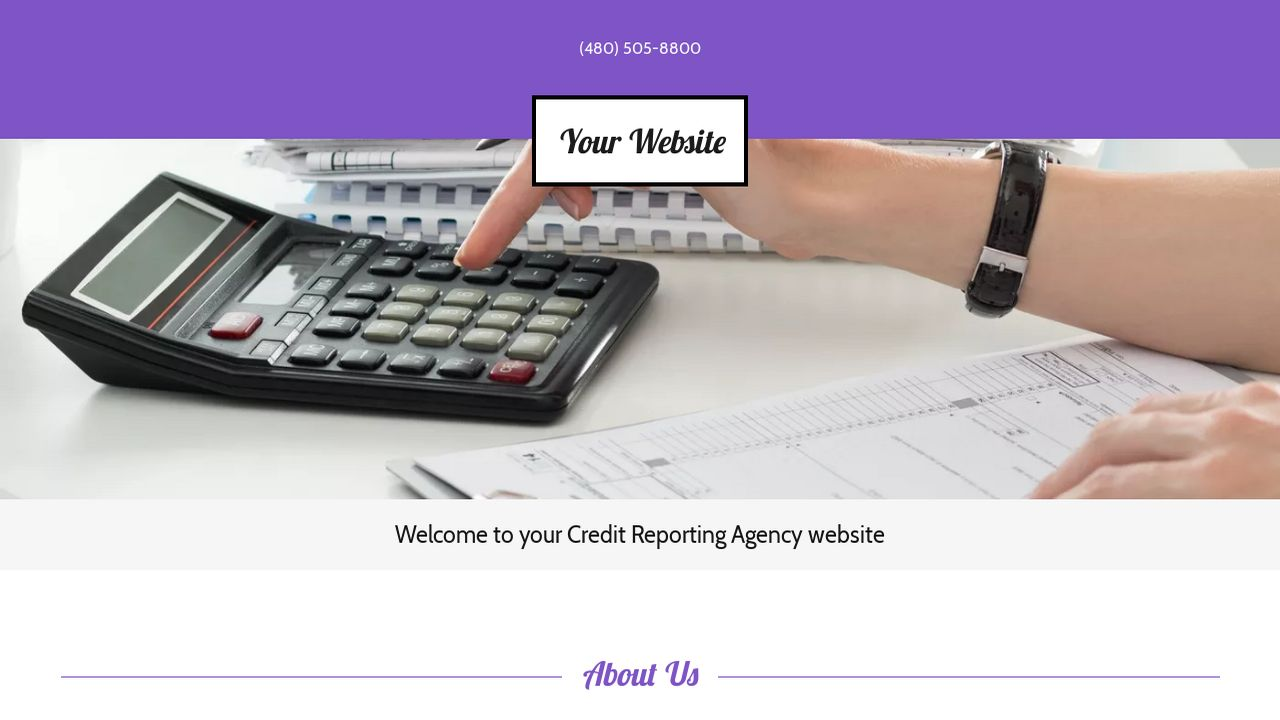 Credit Reporting Agency Website: Example 12