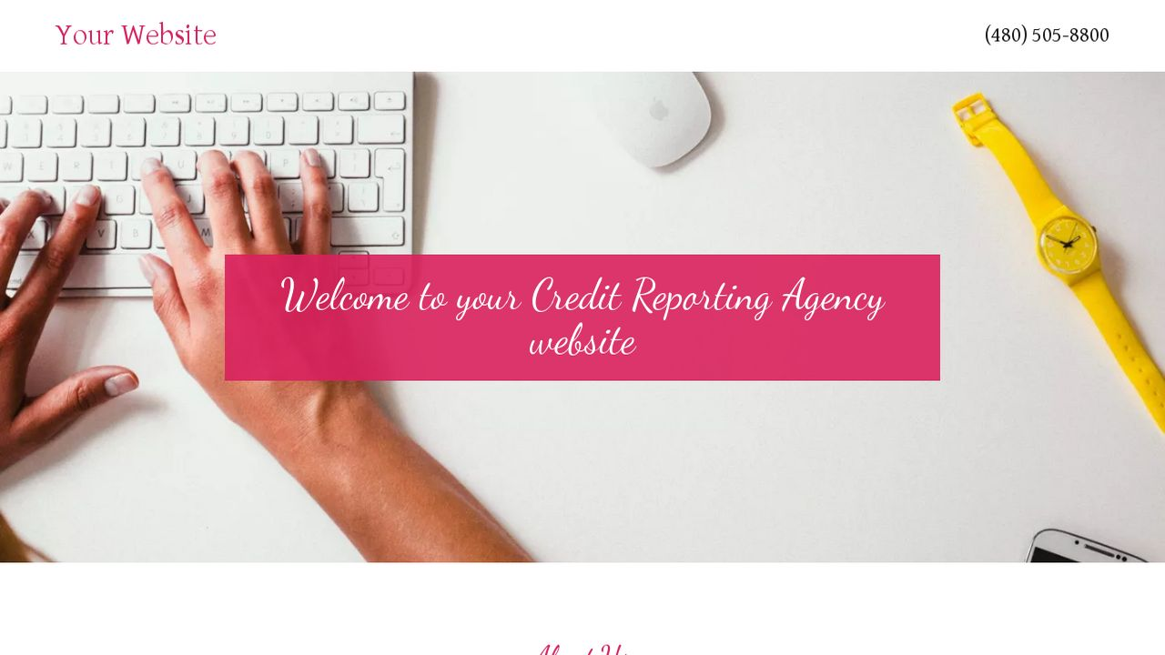 Credit Reporting Agency Website: Example 13