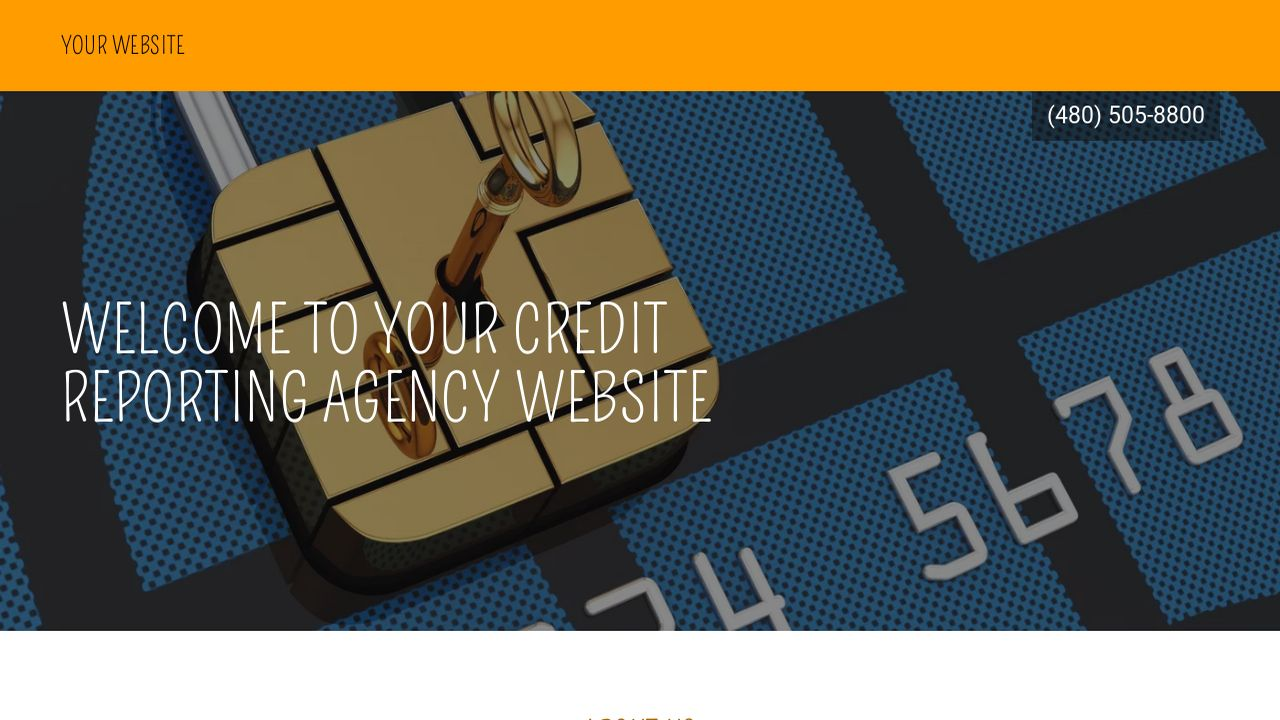 Credit Reporting Agency Website: Example 15