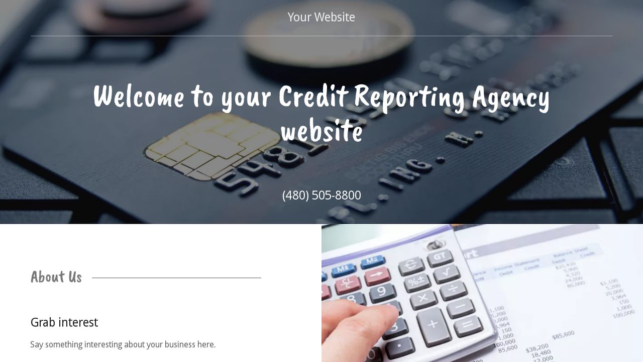 Credit Reporting Agency Website: Example 16