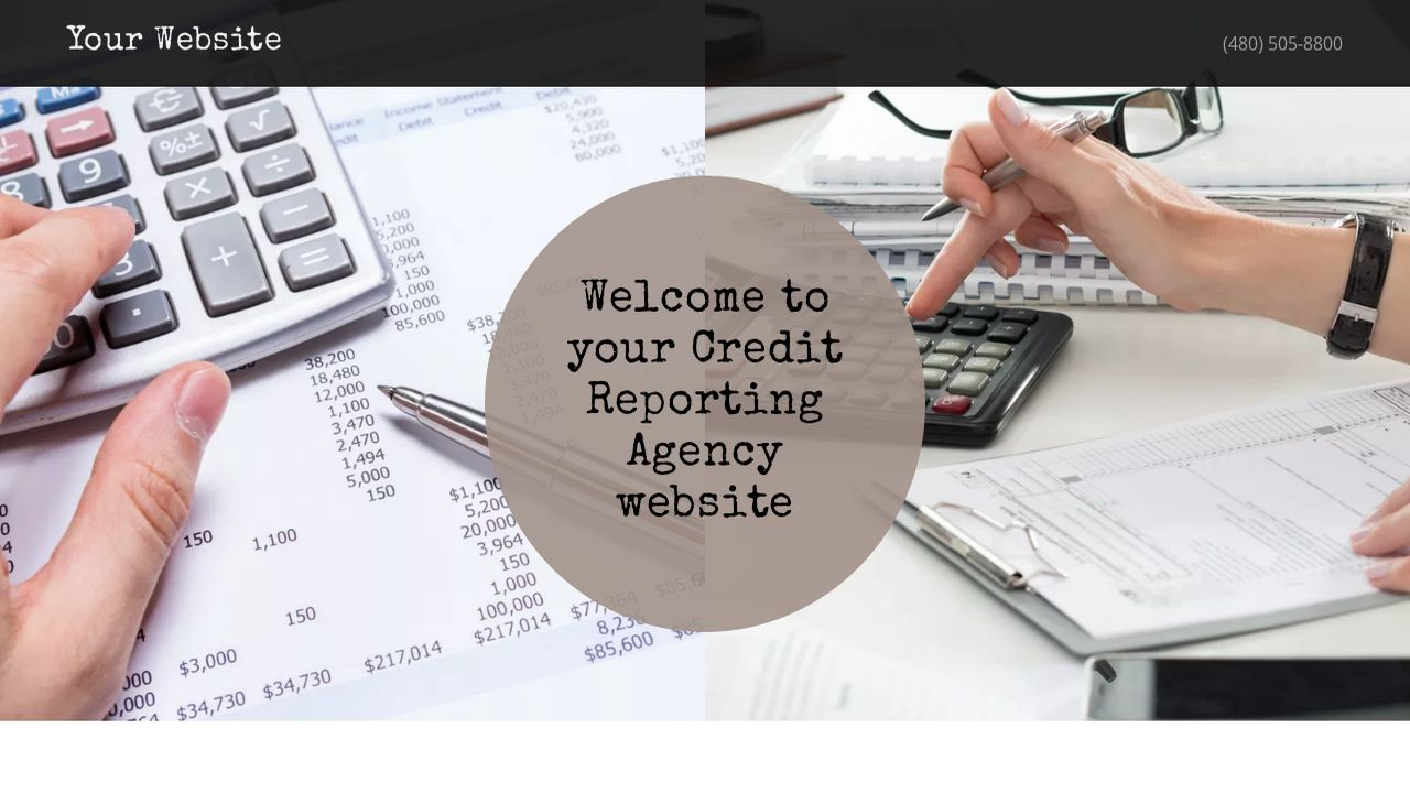 Credit Reporting Agency Website: Example 17