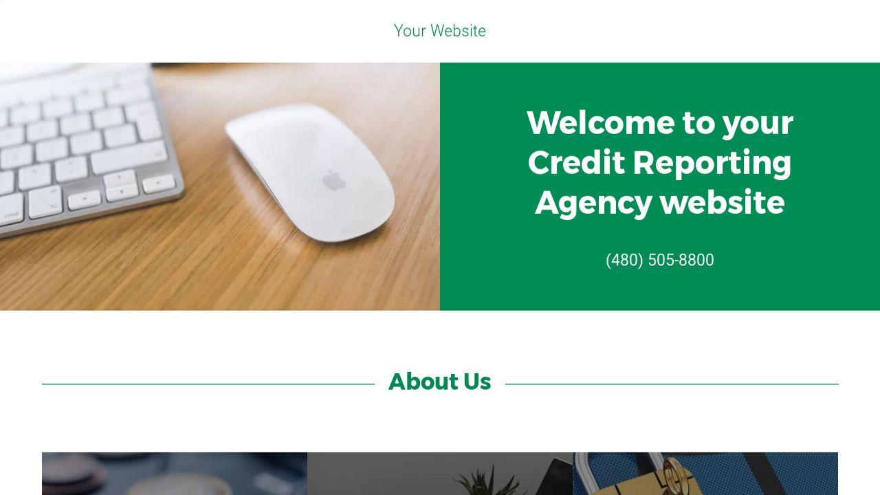Credit Reporting Agency Website: Example 18