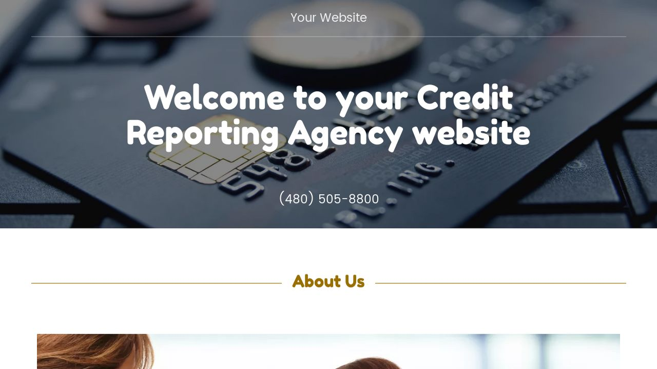 Credit Reporting Agency Website: Example 2